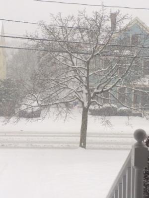 snow storm Nika