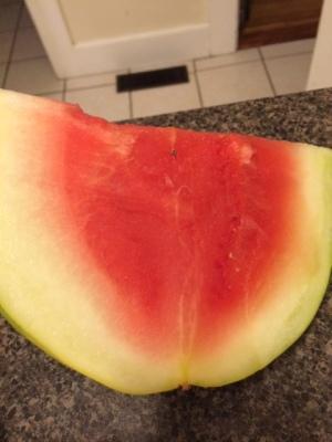 quazi melon