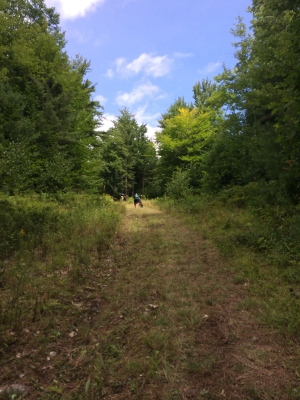 Pratt's Hill