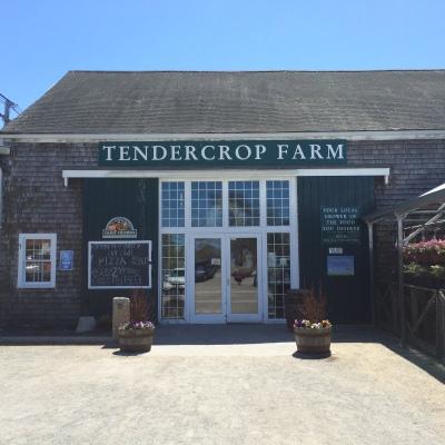 tendercrop farm